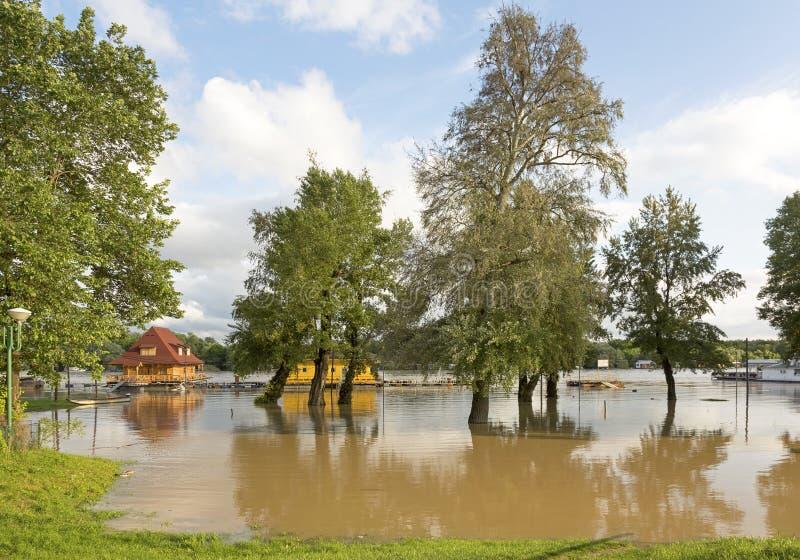 Inundação de Sava River imagens de stock royalty free
