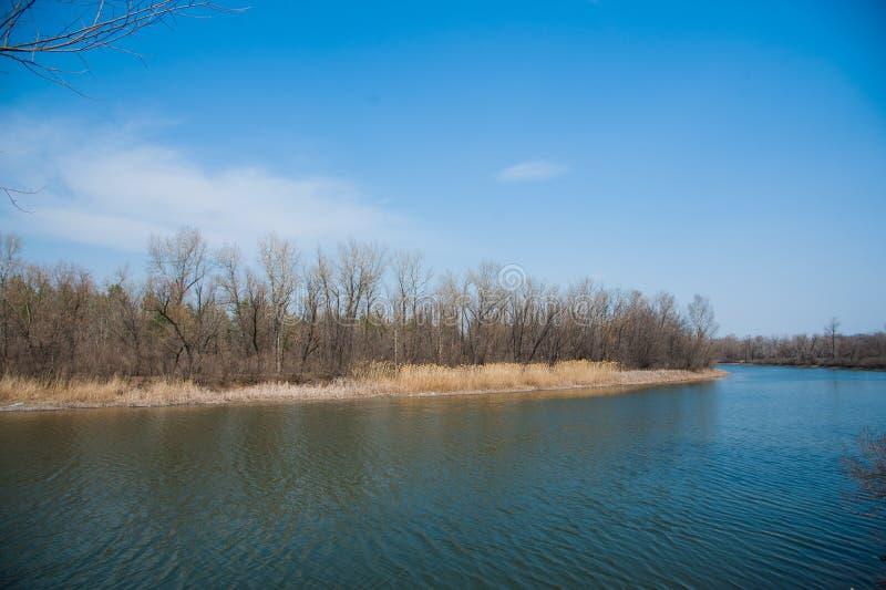 Inundação de Sprin no rio imagens de stock