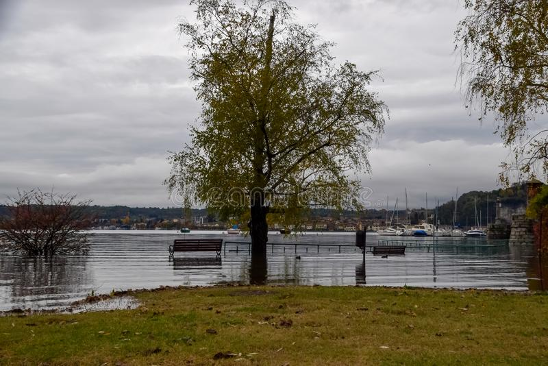 Inundação do lago fotografia de stock royalty free