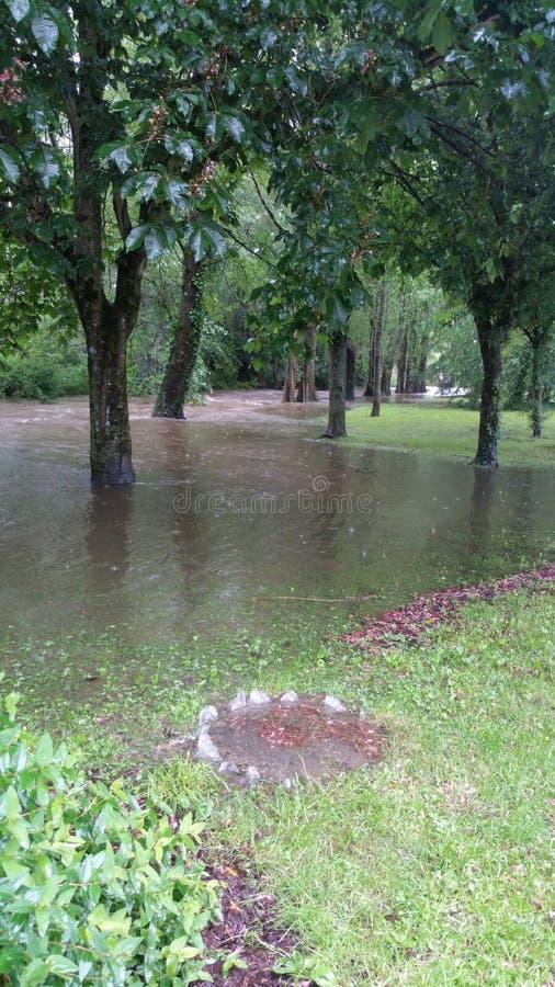 Inundação no parque imagem de stock