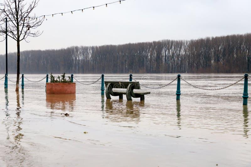 Inundação no Reno em Nierstein imagem de stock royalty free