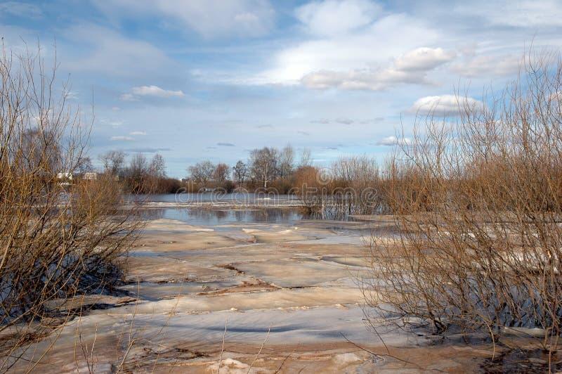Inundação no rio na primavera fotografia de stock royalty free