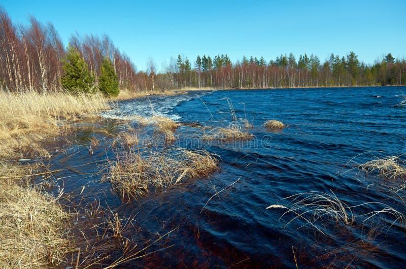 Inundación de la primavera en el lago imagenes de archivo