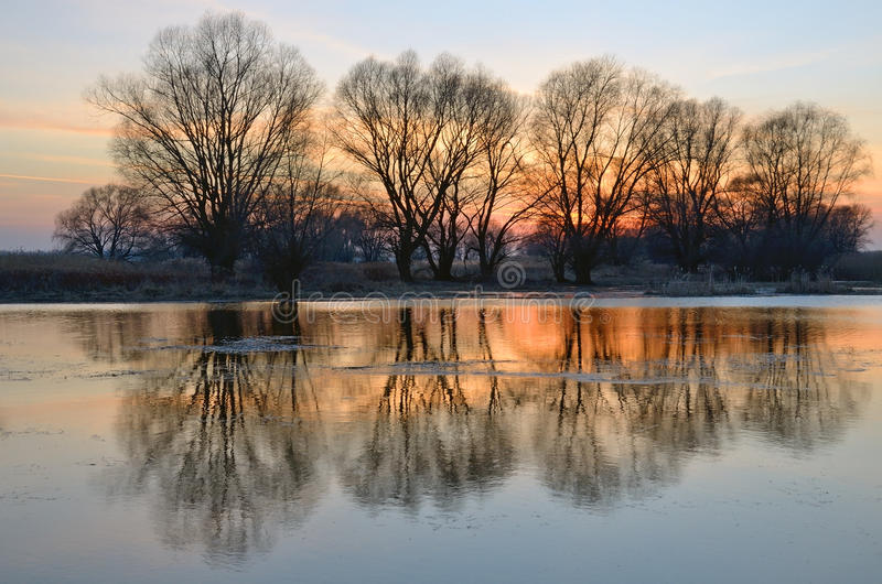 Inundación de la primavera en puesta del sol con la reflexión de árboles en el río foto de archivo libre de regalías