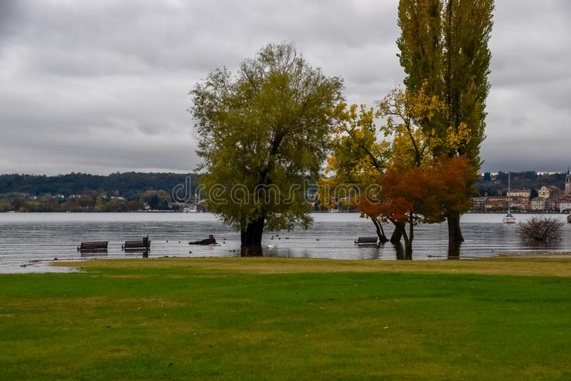 Inundación del lago fotos de archivo libres de regalías