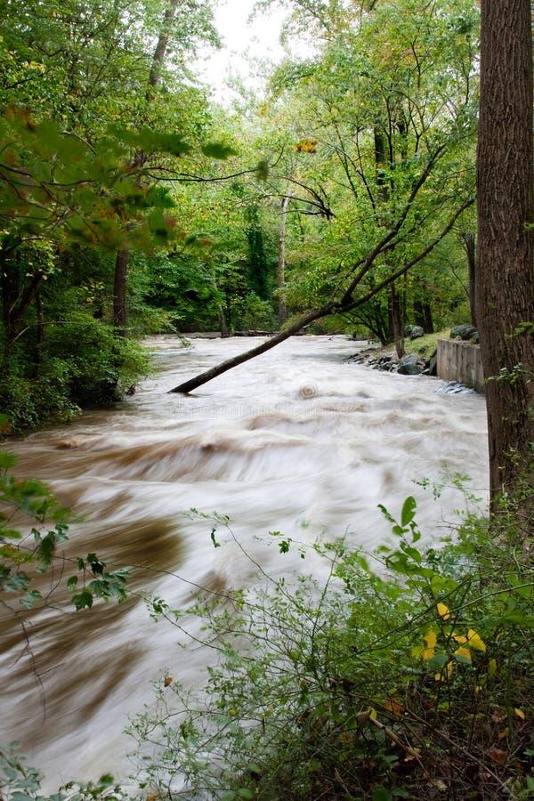 Inundación del parque de Hibernia imagenes de archivo