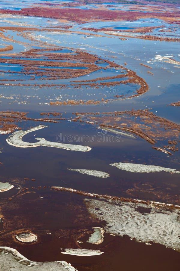 Inundación del río del bosque, visión superior de la primavera imagen de archivo