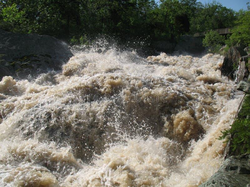 Inundación del resorte fotos de archivo