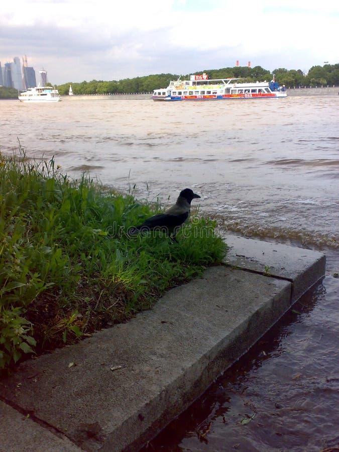 Inundación en Moscú imagenes de archivo