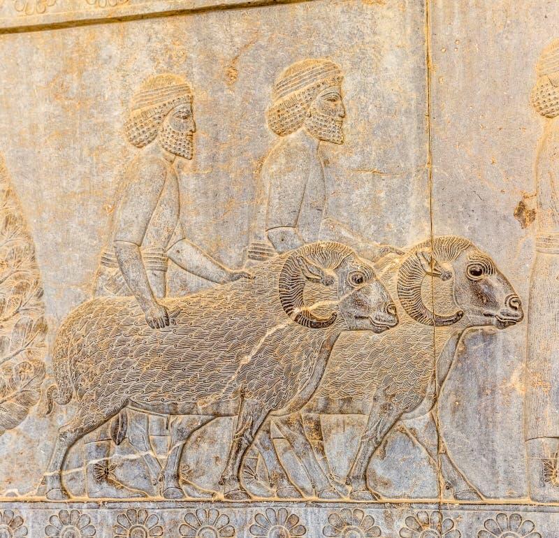 Invånare av historisk välde med djur in royaltyfria foton