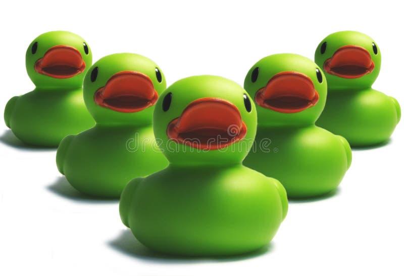Invasion de canard image libre de droits