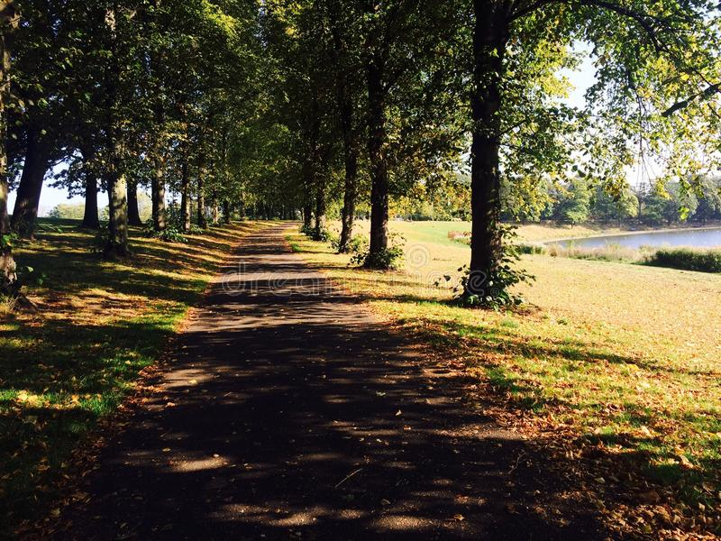 Inverleith-Park, Edinburgh lizenzfreie stockfotos