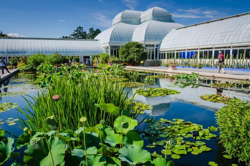 Invernadero de Haupt - jardín botánico de Nueva York - New York City fotos de archivo