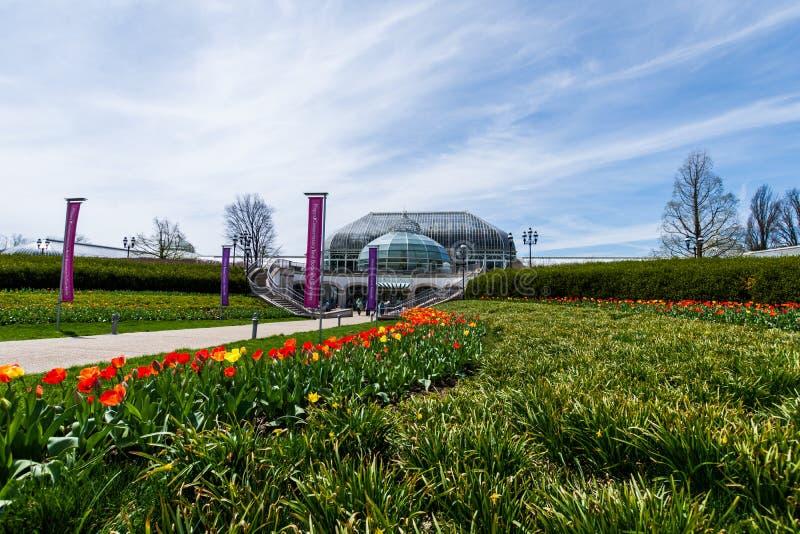 Invernadero de Phipps y jardines botánicos en el pennsylv de Pittsburgh fotos de archivo libres de regalías