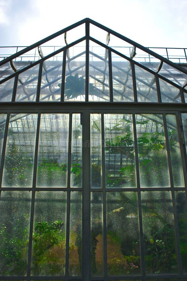 Invernadero del ` de la tete d del parque o en Lyon fotos de archivo libres de regalías