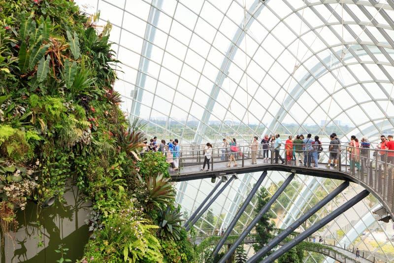 Invernadero Del Jardín De La Nube En Singapur Foto de archivo ...