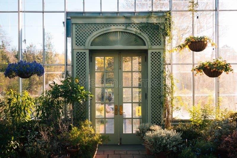 Invernadero en los jardines p?blicos en el Bronx, New York City de la colina de la onda imagen de archivo libre de regalías