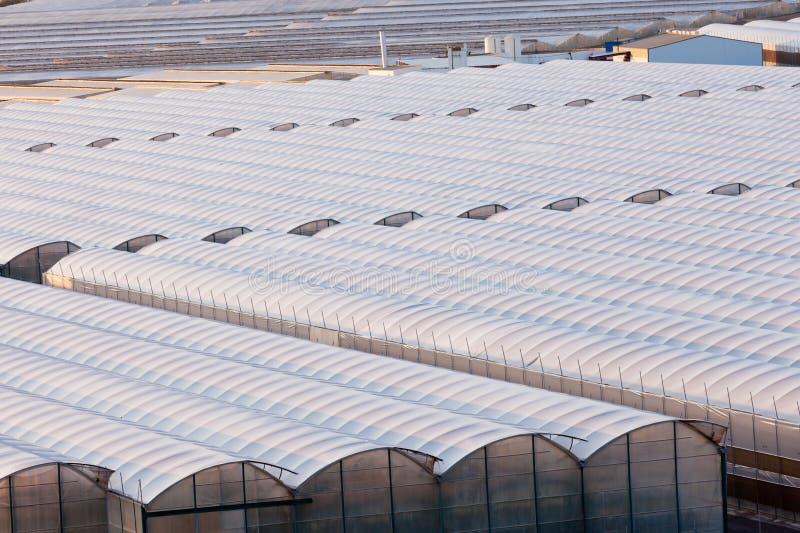 Invernadero industrial para producir los veggies fuera de temporada imagen de archivo libre de regalías