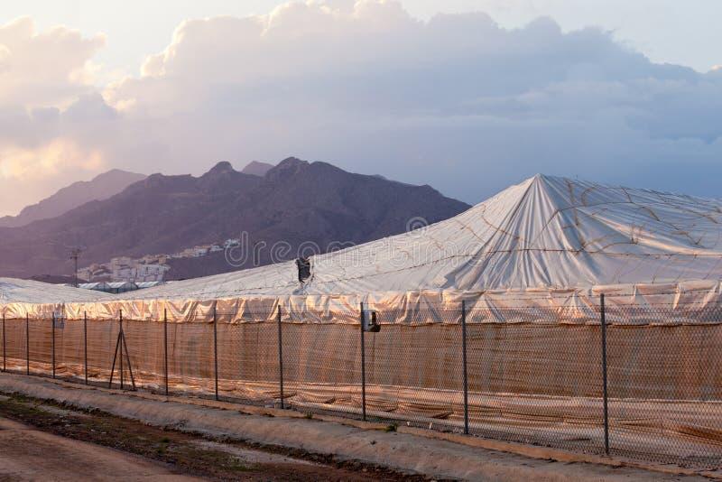 Invernadero plástico industrial del gran escala en España imagen de archivo libre de regalías