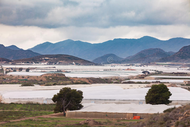 Invernadero plástico industrial del gran escala en España imagen de archivo