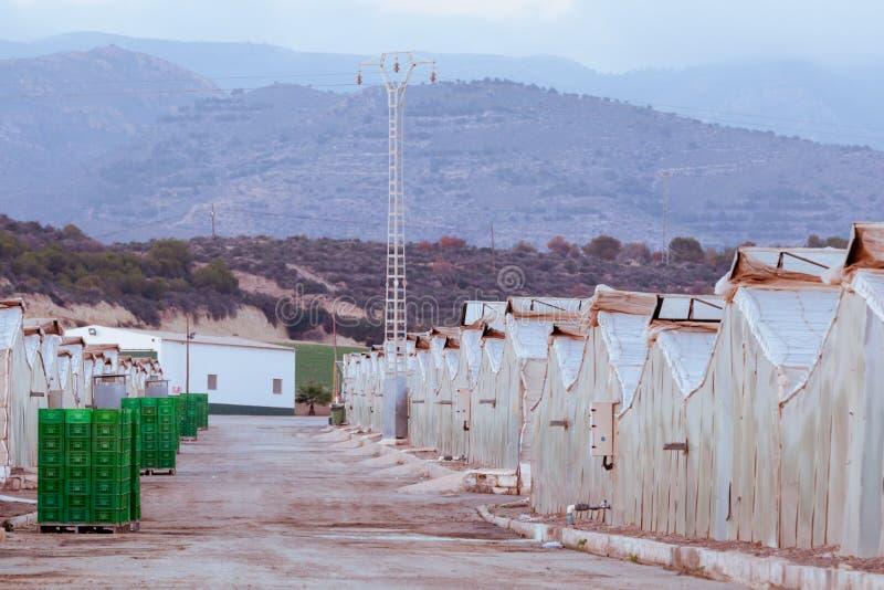 Invernaderos crecientes del veggie industrial en España imagenes de archivo