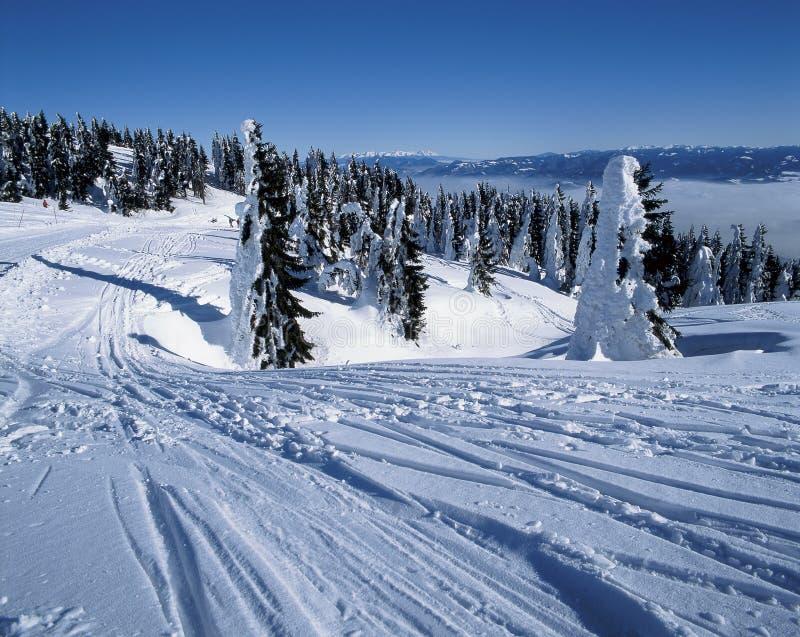 Inverno fotos de stock