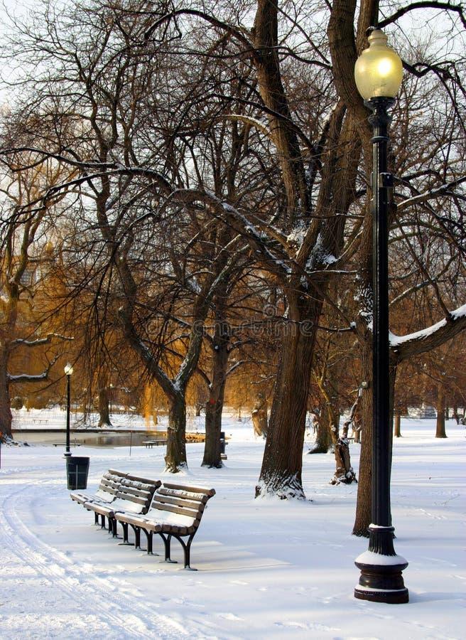 Download Inverno foto de stock. Imagem de caminhada, massachusetts - 69944