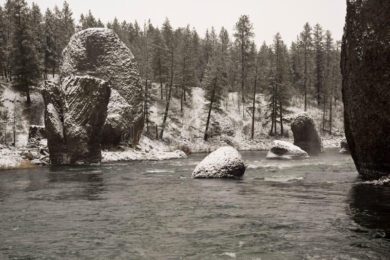Inverno al parco di stato della riva del fiume a Washington immagini stock