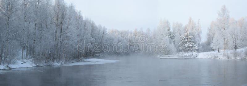 Inverno artico immagini stock libere da diritti