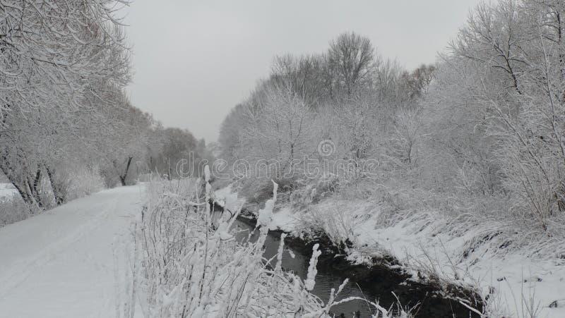 Inverno bianco e nero sul fiume fotografia stock libera da diritti