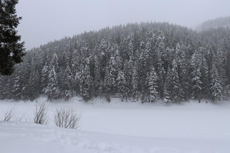 inverno bonito nas montanhas fotografia de stock royalty free
