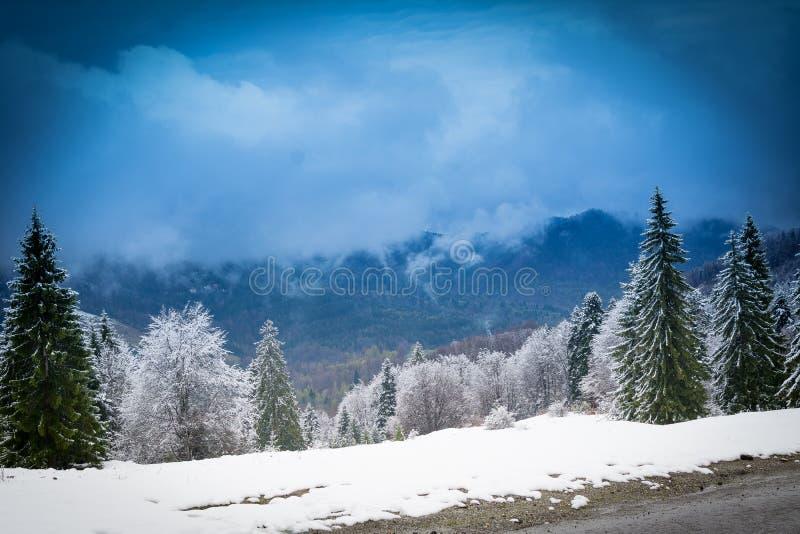 Inverno in Brasov Romania fotografie stock