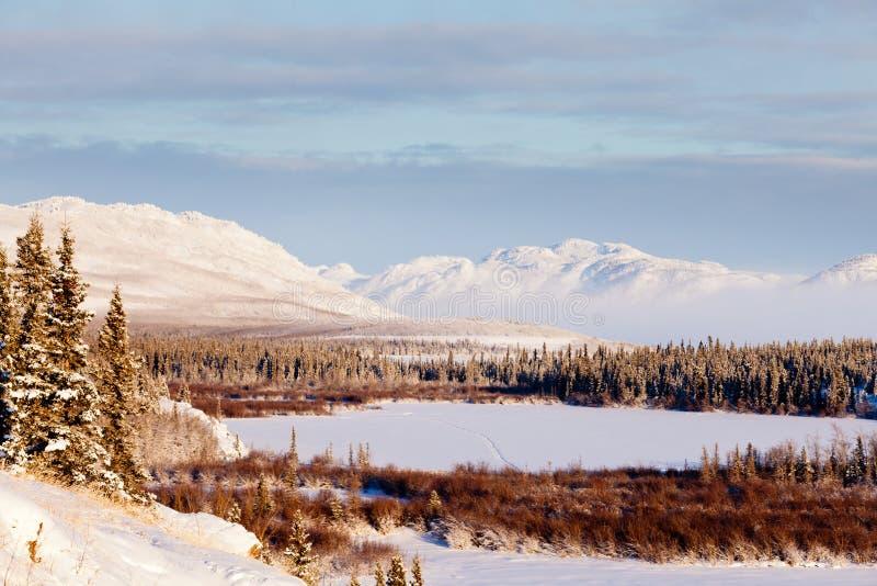Inverno cénico no lago congelado Laberge Yukon Canadá imagens de stock royalty free