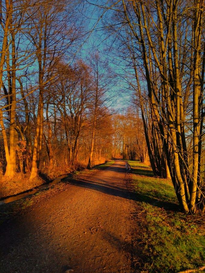 Inverno caldo fotografie stock