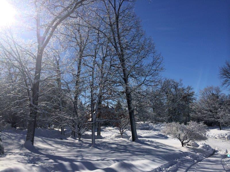 Inverno a casa fotografia stock