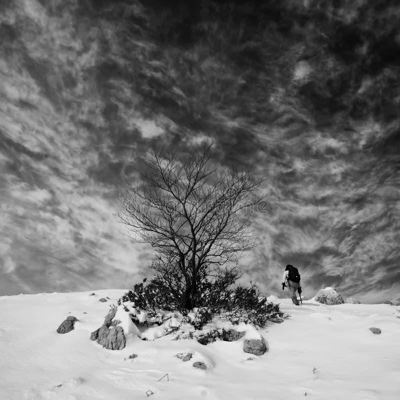 Inverno che fa un'escursione in bianco e nero fotografia stock libera da diritti