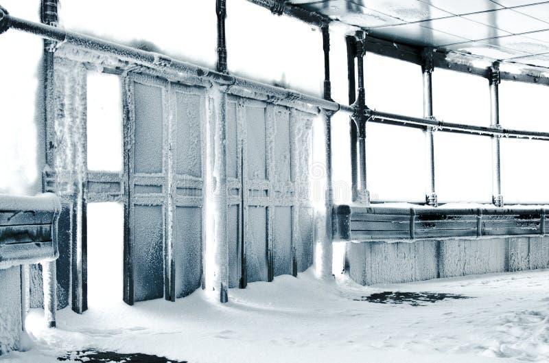 Inverno congelado dos dors fotografia de stock royalty free