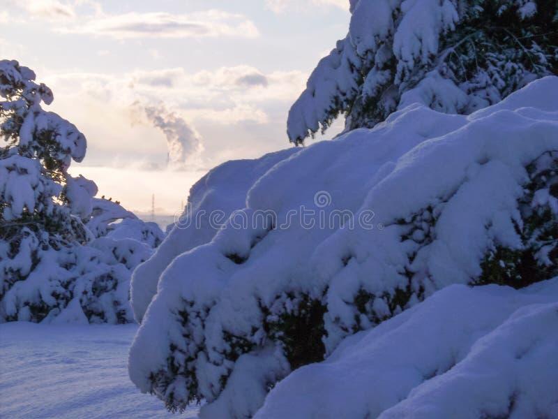 inverno da neve no fundo na cidade de Ptolemaida, grécia fotografia de stock royalty free