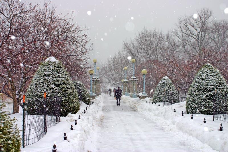 Inverno de Boston fotos de stock royalty free