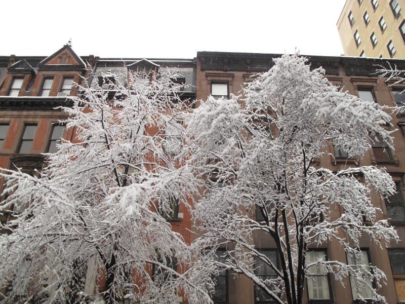 inverno de New York City foto de stock