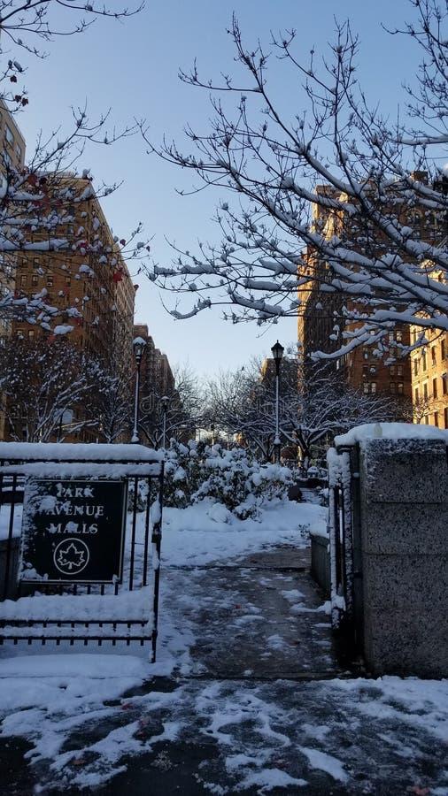 inverno de NY imagem de stock