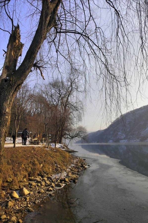 Inverno 2013 del paesaggio pittoresco di Nami Island, Corea del Sud fotografia stock