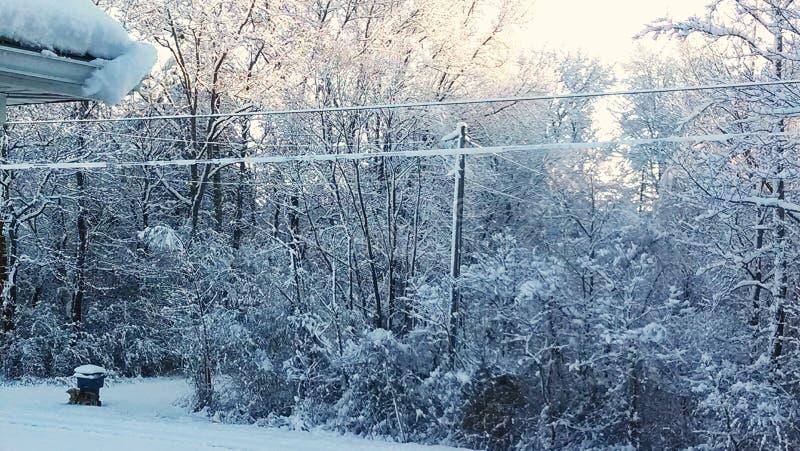 Inverno '14 dell'Alabama immagine stock