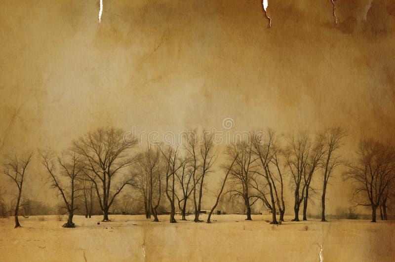 Inverno dell'annata fotografie stock