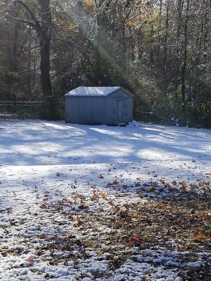 Inverno di Snowie fotografia stock libera da diritti