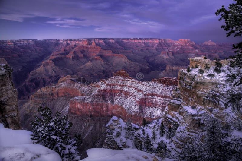Inverno do Grand Canyon fotos de stock royalty free