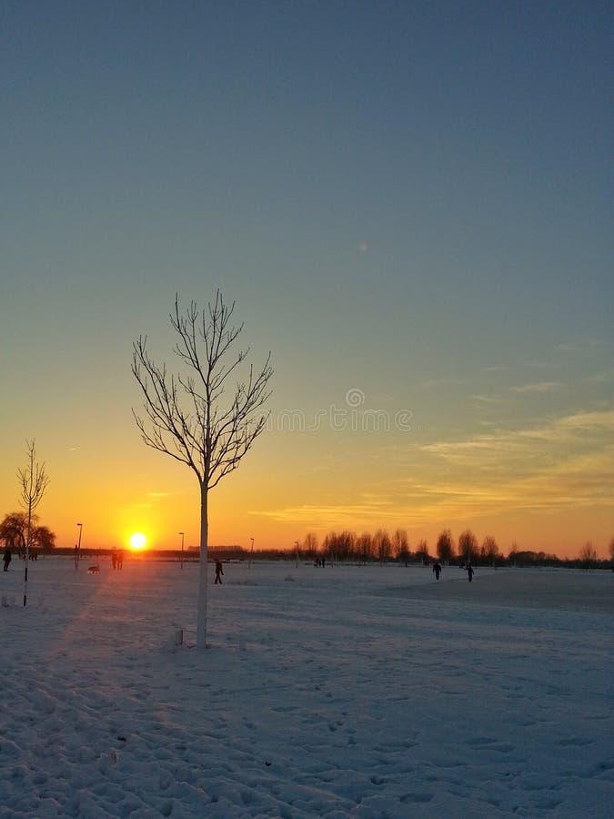 inverno do por do sol imagem de stock