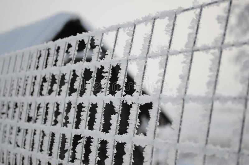 inverno 6 do russo fotografia de stock