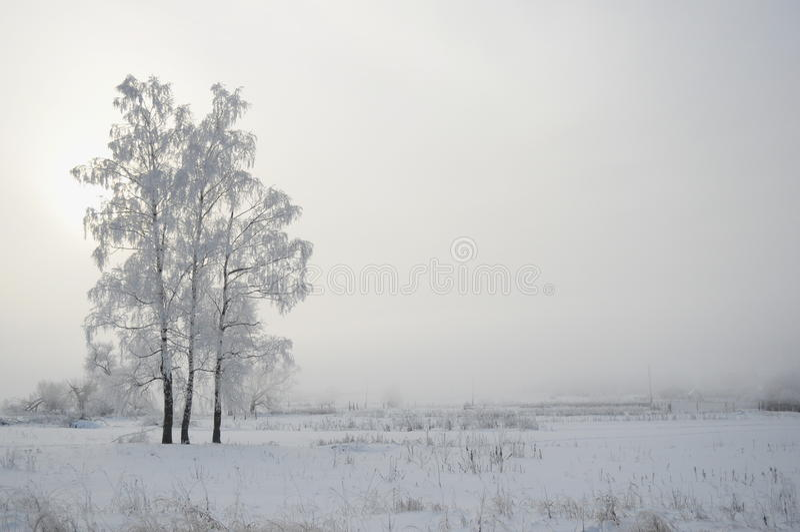 inverno 3 do russo imagens de stock royalty free