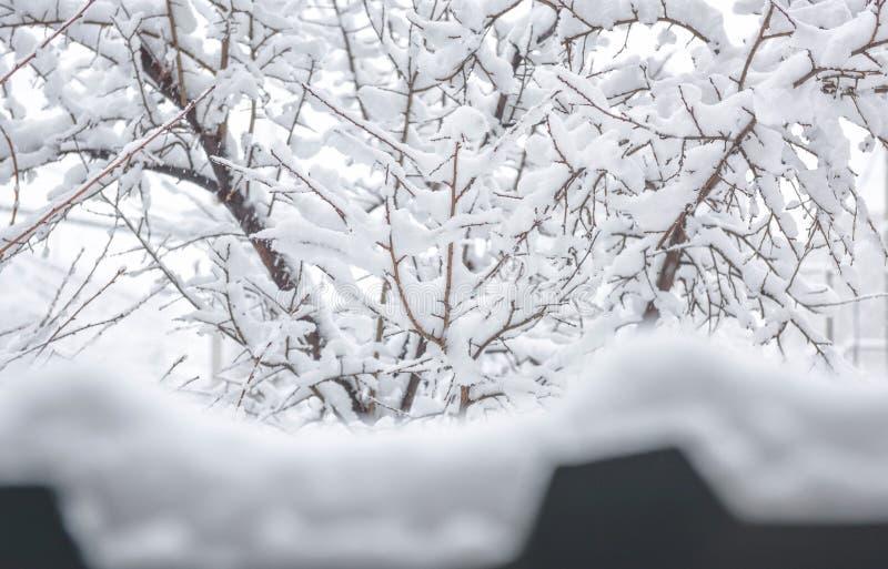inverno duro, armênio fotografia de stock royalty free